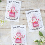 DIY friend Valentine & FREE printable!