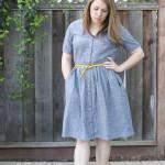 polka dot chambray darling ranges dress