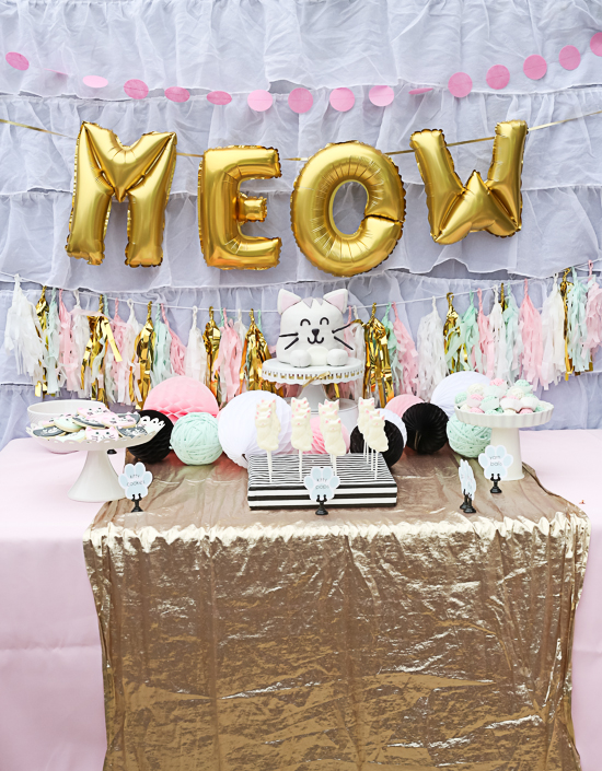 kitty cat birthday party!